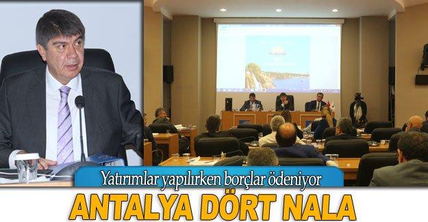 Antalya dört nala