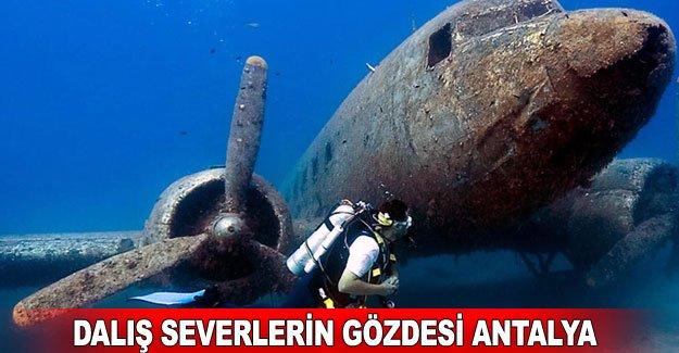Dalış severlerin gözdesi Antalya