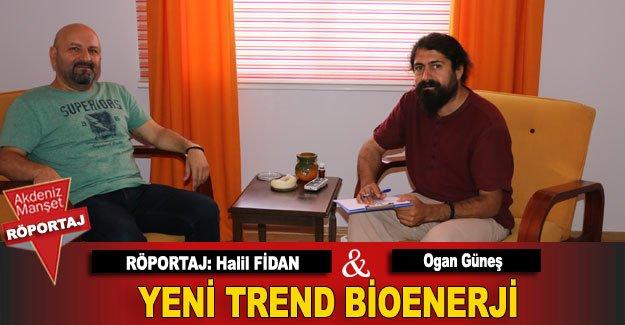 Yeni trend bioenerji
