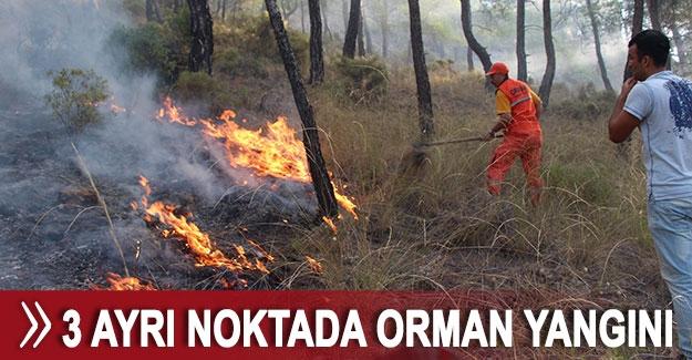 Antalya'da 3 ayrı noktada orman yangını
