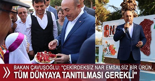 """Çavuşoğlu: """"Çekirdeksiz nar tüm dünyaya tanıtılması gerekli"""""""