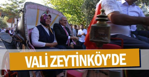 Vali Zeytinköy'de