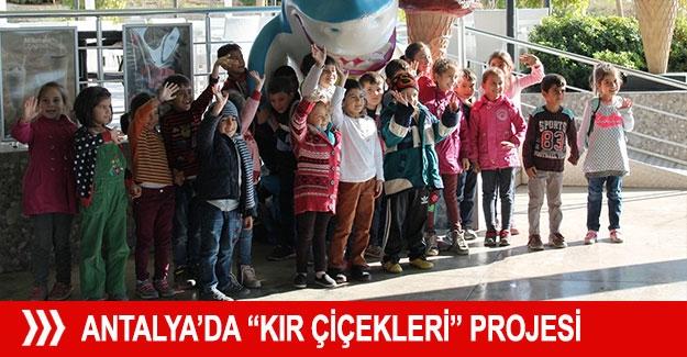 """Antalya'da """"Kır Çiçekleri"""" Projesi"""