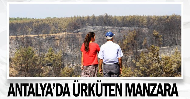 Antalya'da ürküten manzara