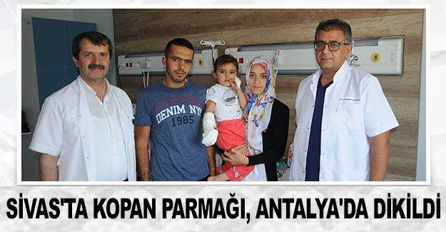 Sivas'ta kopan parmağı, Antalya'da dikildi
