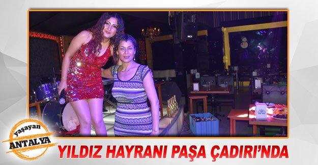 Yıldız hayranı Paşa Çadırı'nda