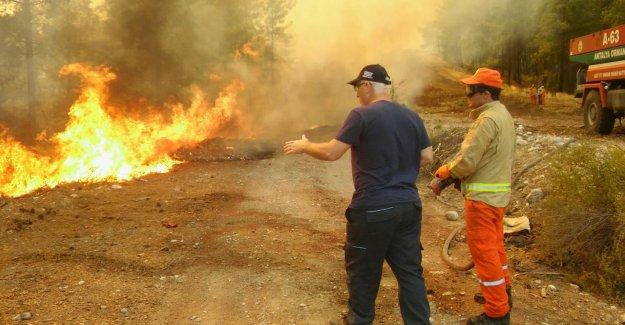 25 hektar kızılçam ormanı yandı