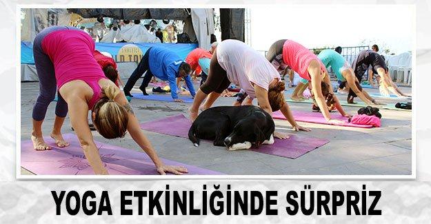 Yoga etkinliğinde sürpriz