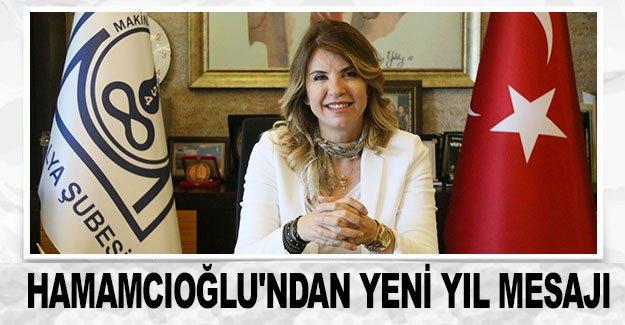 Hamamcıoğlu'ndan yeni yıl mesajı