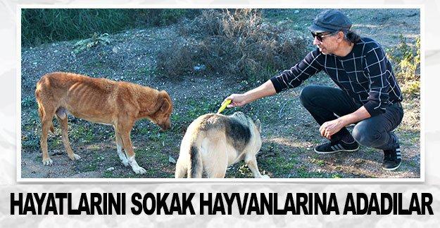 Hayatlarını sokak hayvanlarına adadılar