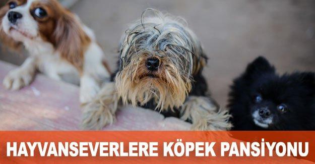 Hayvanseverlere köpek pansiyonu
