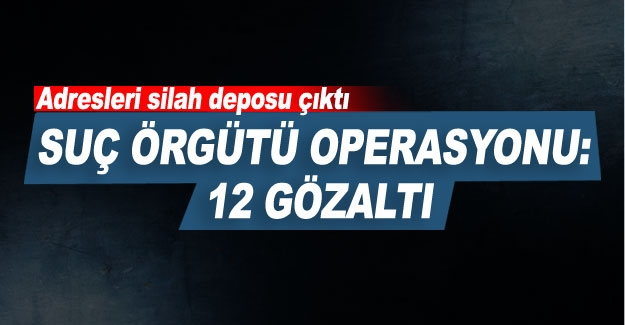 Suç örgütü operasyonu: 12 gözaltı