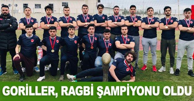 Goriller, Ragbi şampiyonu oldu