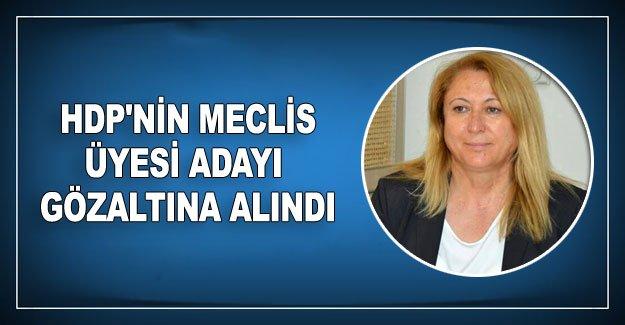 HDP'nin meclis üyesi adayı gözaltına alındı