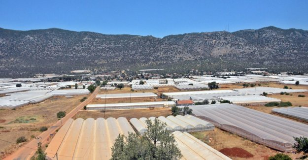 Demre'de tarım arazileri korunacak