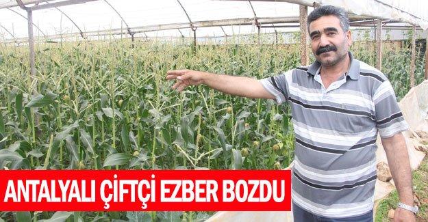 Antalyalı çiftçi ezber bozdu