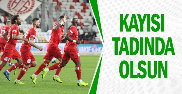 KAYISI TADINDA OLSUN