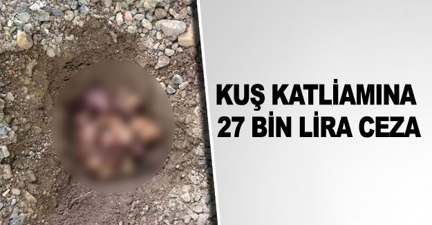 Kuş katliamına 27 bin lira ceza