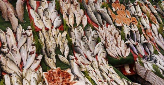 Balık tüketimi arttı