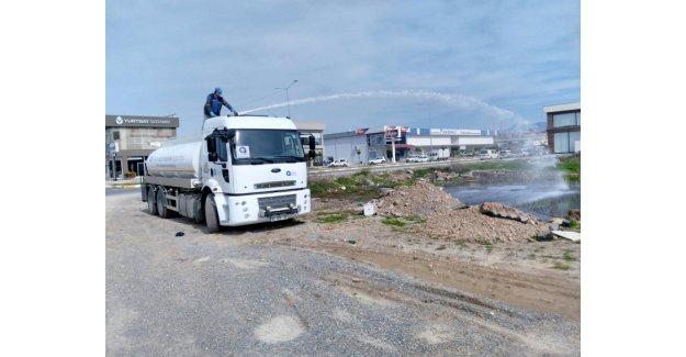 Manavgat'ta sinekle mücadele