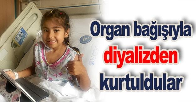 Organ bağışıyla diyalizden kurtuldular