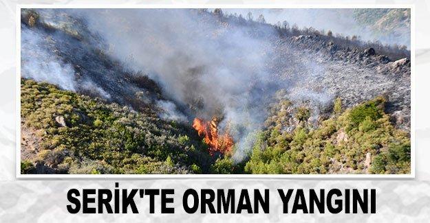 SERİK'TE ORMAN YANGINI