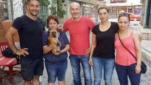 Sokak hayvanları için 39 şehir gezecek
