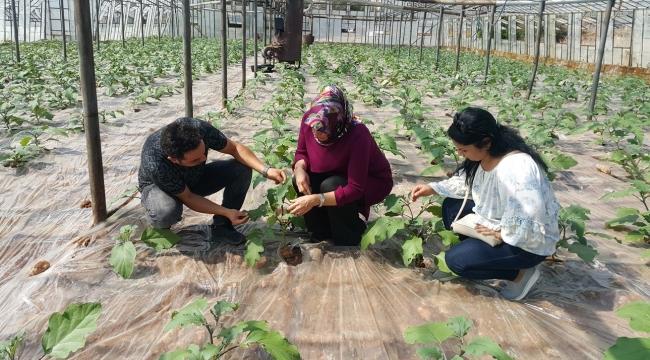10 bin 484 çiftçiye eğitim