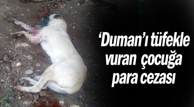 'Duman'ı tüfekle vuran çocuğapara cezası