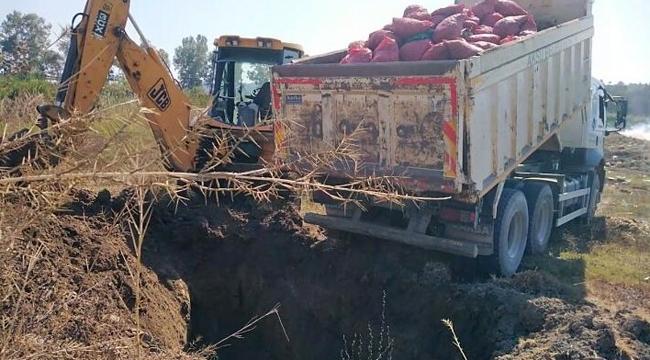 8 ton kaçak midye yakalandı