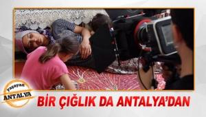 Bir çığlık da Antalya'dan