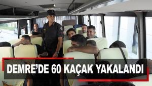 Demre'de 60 kaçak yakalandı