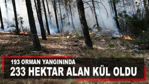 193 orman yangınında 233 hektar alan kül oldu