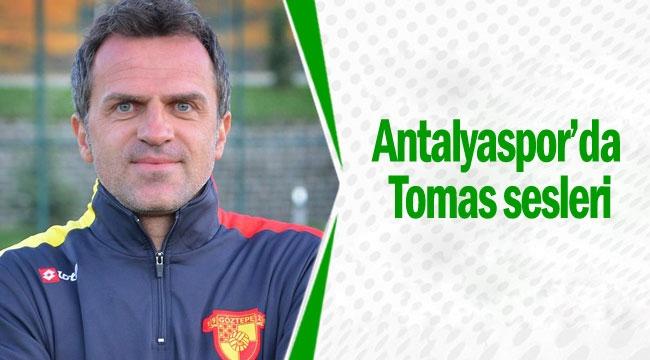 Antalyaspor'da Tomas sesleri
