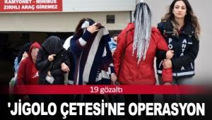 'Jigolo çetesi'ne operasyon: 19 gözaltı