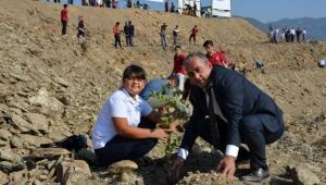 Milli ağaçlandırma gününe destek