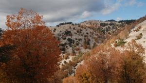 Yaylalarda sonbahar güzelliği