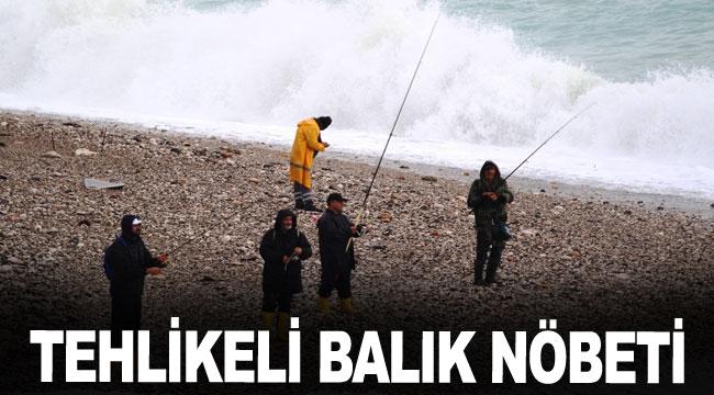 Tehlikeli balık nöbeti