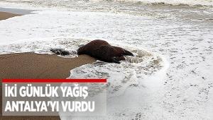 İki günlük yağış Antalya'yı vurdu