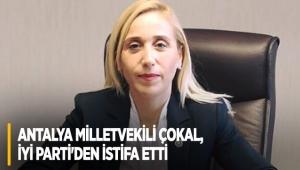Antalya Milletvekili Çokal, İYİ Parti'den istifa etti