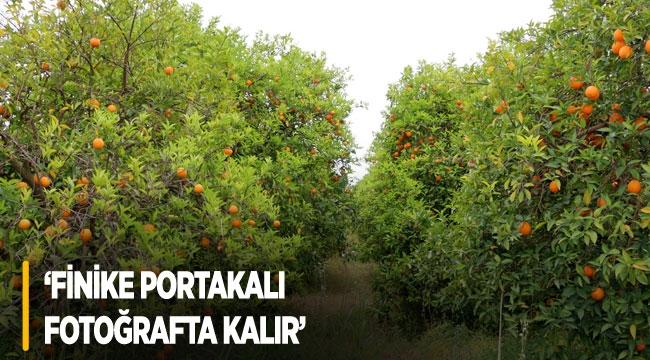'Finike portakalı fotoğrafta kalır'