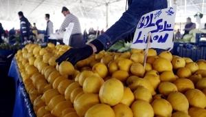 Antalya'da limon fiyatları değişmedi, Finike'de üreticide portakal tükendi