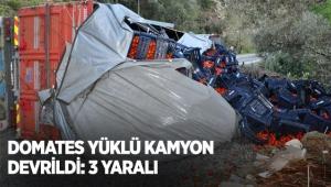 Domates yüklü kamyon devrildi: 3 yaralı