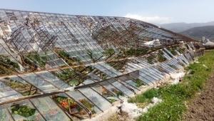 Antalya'da şiddetli rüzgar, cam serayı yıktı