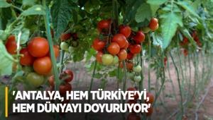 'Antalya, hem Türkiye'yi, hem dünyayı doyuruyor'