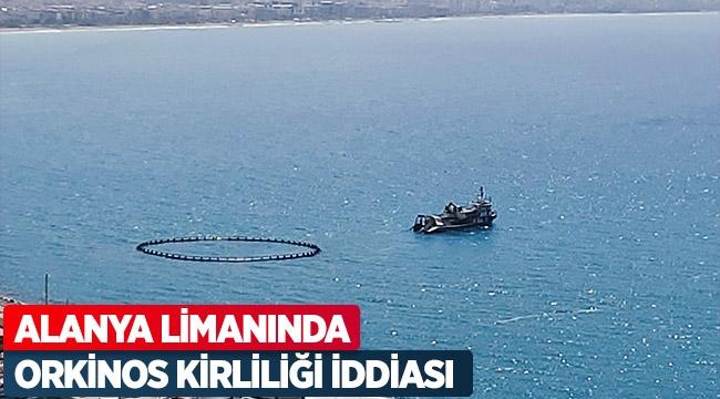 Alanya limanında orkinos kirliliği iddiası