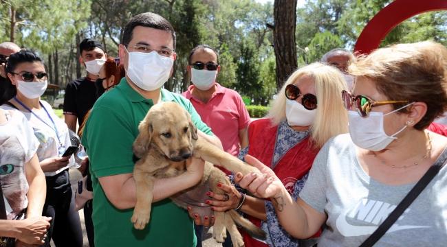 Hayvanseveremama ve ilaçmüjdesi