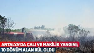 Antalya'da çalı ve makilik yangını; 10 dönüm alan kül oldu