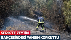 Serik'te zeytin bahçesindeki yangın korkuttu