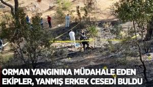 Orman yangınına müdahale eden ekipler, yanmış erkek cesedi buldu